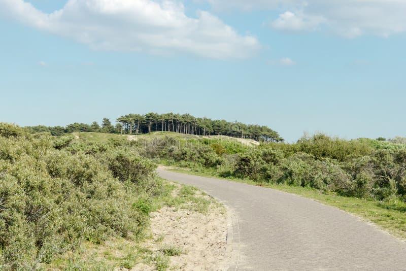 Roweru ślad w holenderskim parku narodowym obrazy royalty free