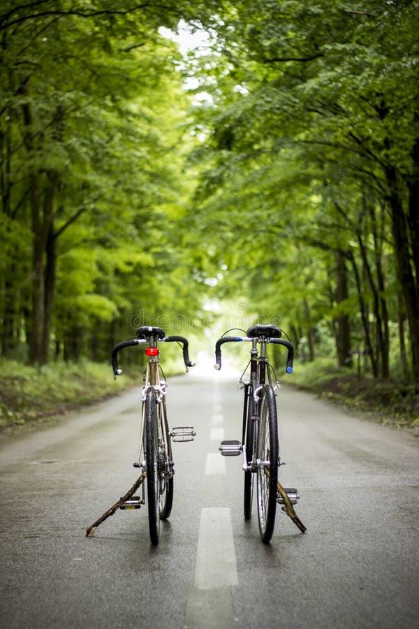 rowery 2 zdjęcie royalty free