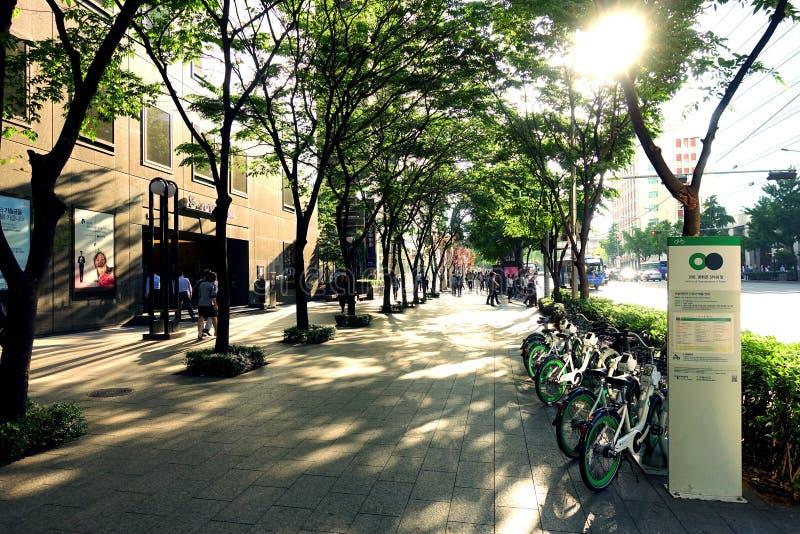 Rowery na ścieżce, Seul, Południowy Korea zdjęcia stock