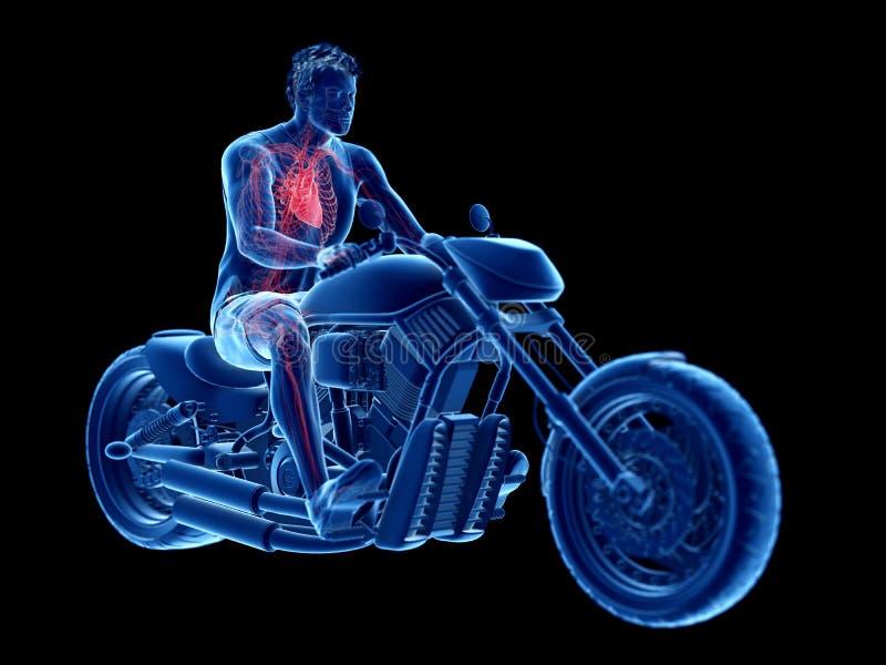 rowerzyści kierowi ilustracja wektor