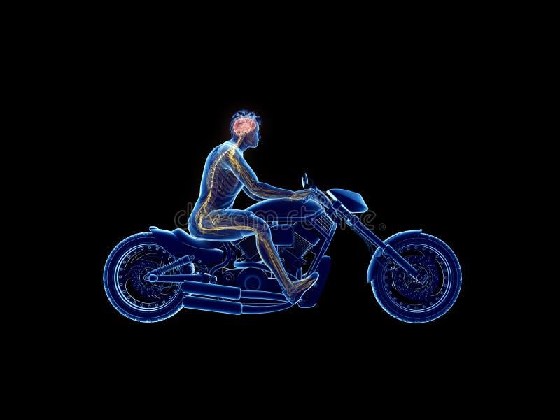 rowerzyści móżdżkowi ilustracja wektor