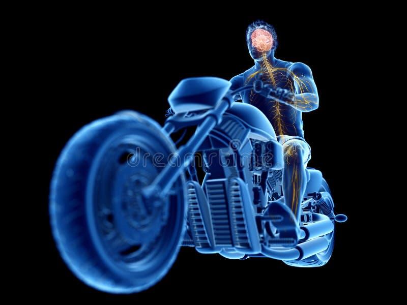 rowerzyści móżdżkowi ilustracji