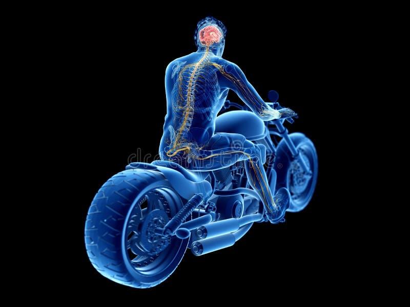 rowerzyści móżdżkowi royalty ilustracja