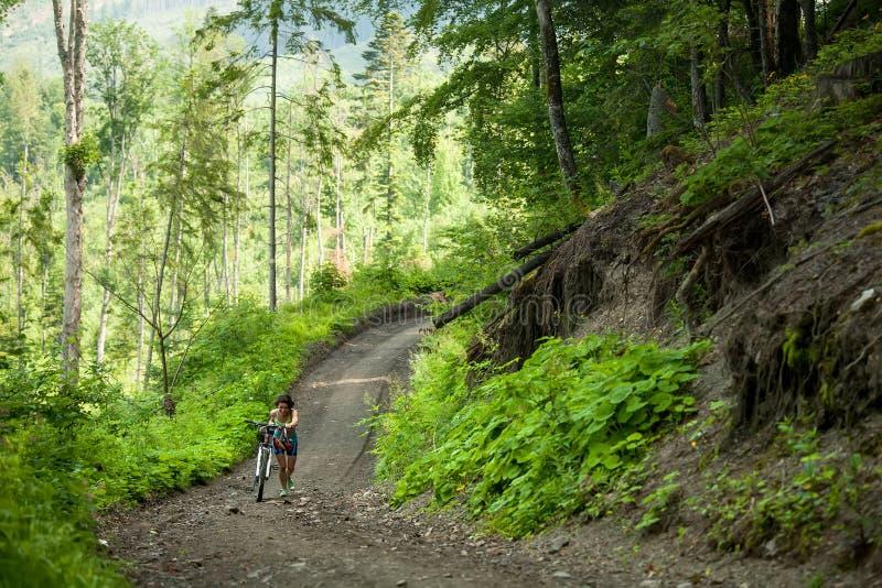 Rowerzysta pcha bicykl up w zielonym lesie fotografia stock