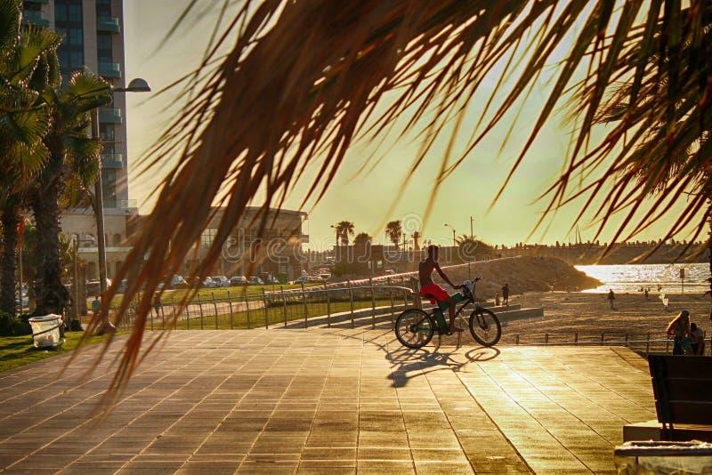 Rowerzysta sylwetki jazda wzdłuż plaży przy zmierzchem obraz stock