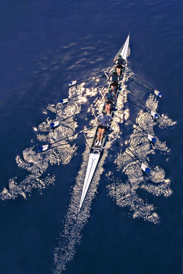 rowing стоковое изображение rf
