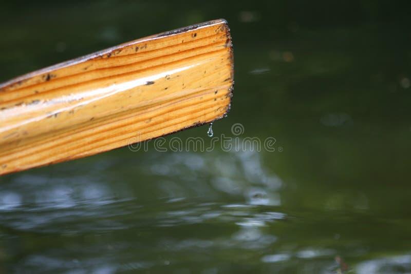Rowing boat oar stock photo