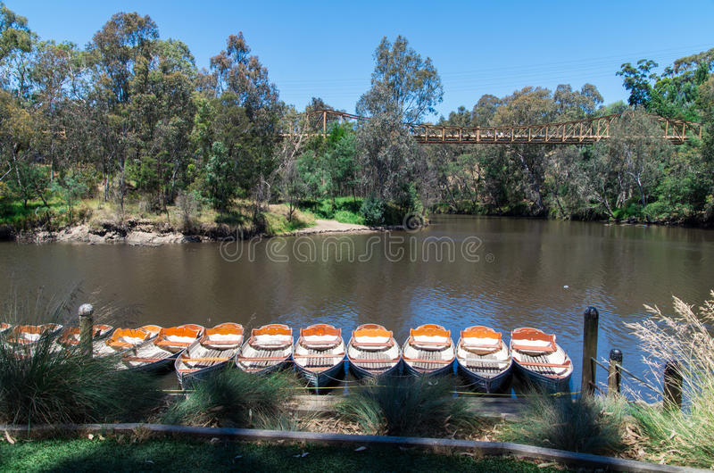 Rowing boats at Fairfield Boathouse. Rowing boats on the bank of the Yarra River in Melbourne, Australia on a summer day royalty free stock photo