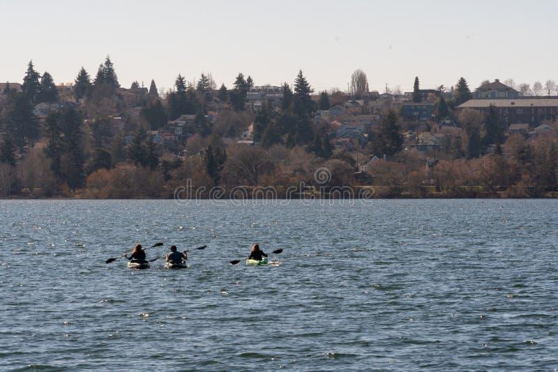 Rowing at Greenlake. Seattle, Washington - 2019-03-17 - Three people rowing in Greenlake as Spring begins in Seattle stock photo