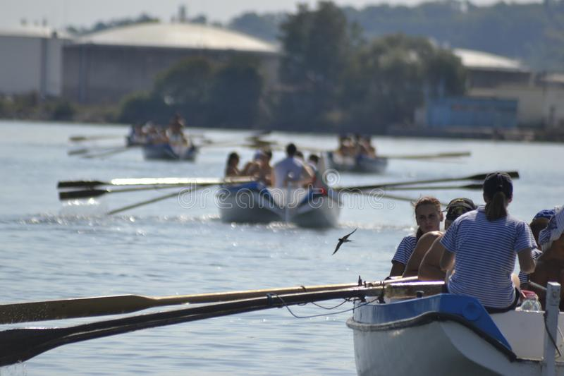 Rowing race at sea near the shore stock photography