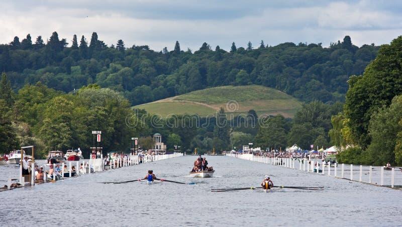rowing regatta гонки henley стоковое изображение