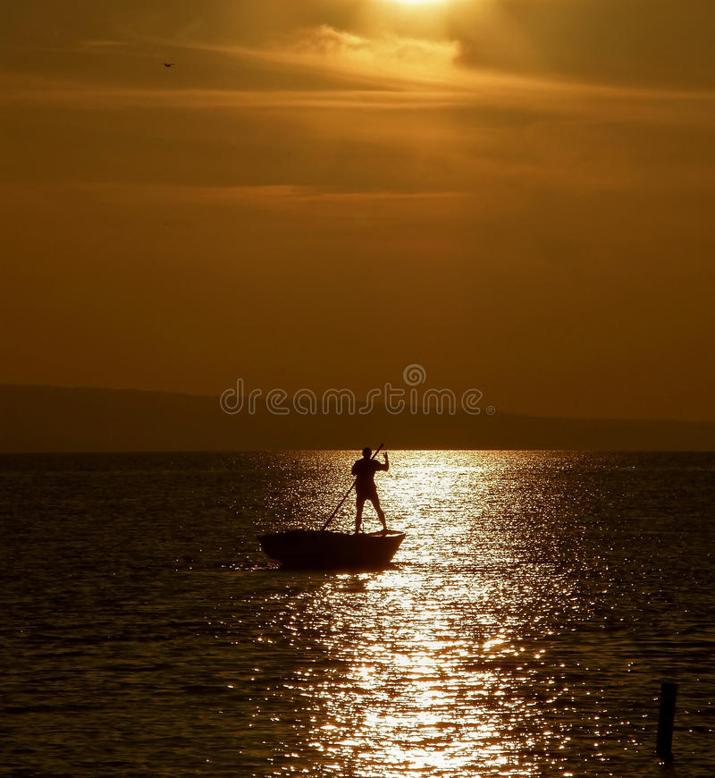 Rowing in sunset 4 stock photography