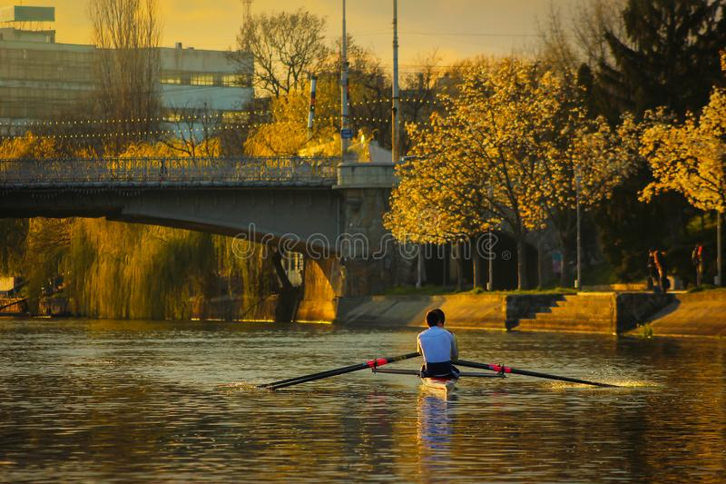 Rowing at sunset on the Bega River with Mary Maria / Traian bridge in Timisoara. Romania stock photos