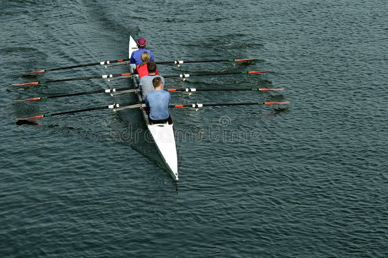 Download Rowing Team stock photo. Image of british, person, sport - 2414482