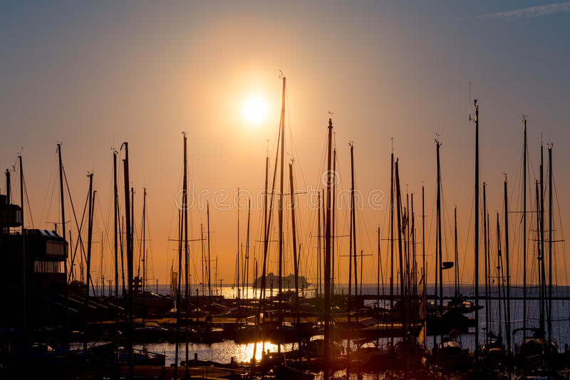 Rows of boats mast. Rows of boats at pier in the evening against sunset skies (sunset dusk lighting royalty free stock images