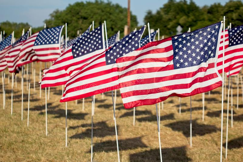 Rows of flags of the United States of America. royalty free stock photos