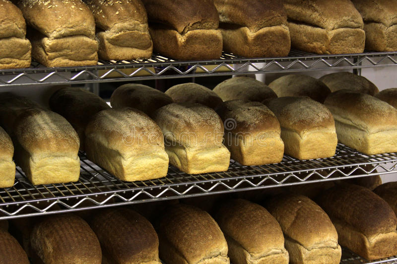 Rows of Freshly Baked Bread royalty free stock photos