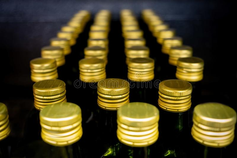 Rows of olive oil bottles with golden caps. royalty free stock images