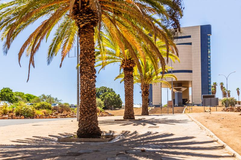 Rows of palm trees and modern building on the central street of Windhoek, Namibia. Africa, african, architecture, capital, center, city, climate, colony, day stock images