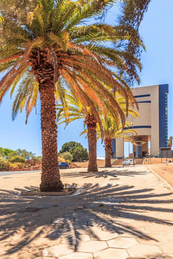 Rows of palm trees and modern building on the central street of Windhoek, Namibia. Africa, african, architecture, capital, center, city, climate, colony, day stock photo