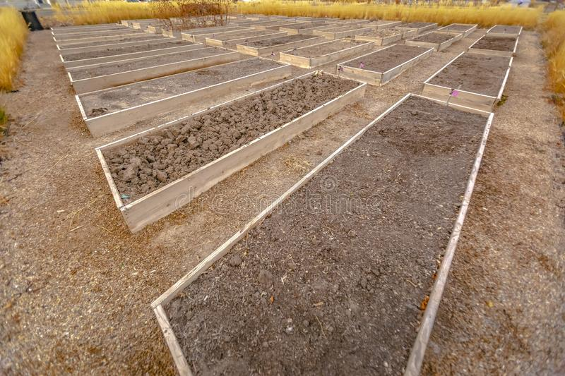Rows of raised wooden garden beds with faucets and filled with coarse brown soil stock photos