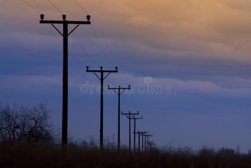 Rows of telephone poles royalty free stock photography