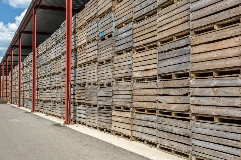 Rows of wooden crates boxes and pallets for fruits and vegetables in storage stock. production warehouse. Plant Industry stock image