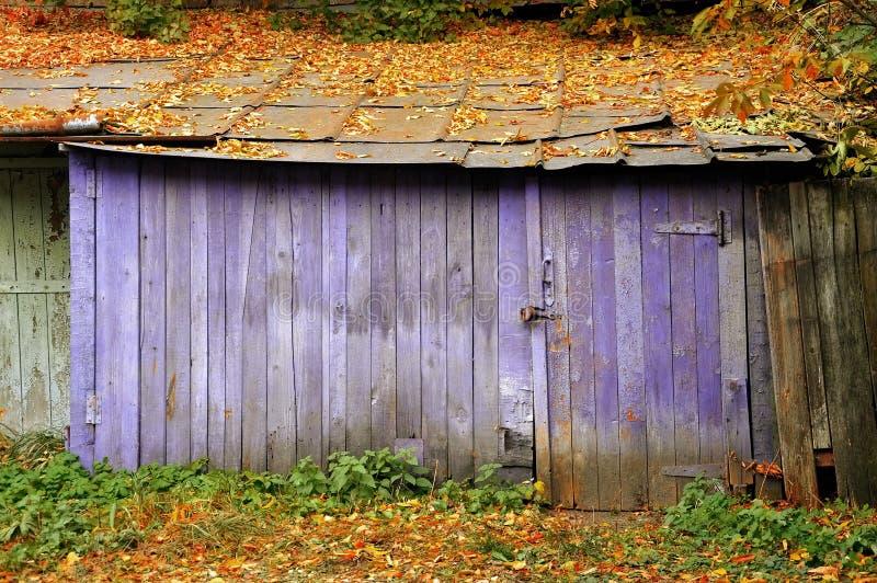 Roxo velho do celeiro com as folhas caídas no telhado imagens de stock