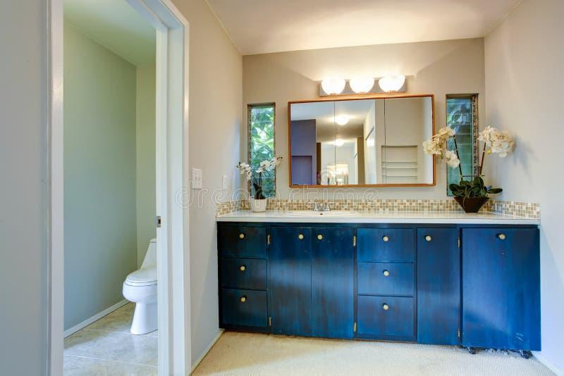 Blue Kitchen Cabinet Ikea