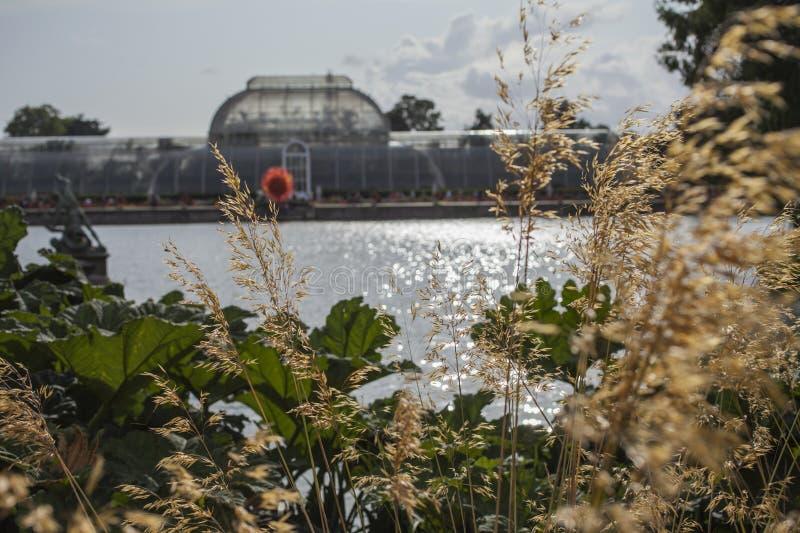 Royal Botanic Gardens, Kew - uma vista fotos de stock royalty free