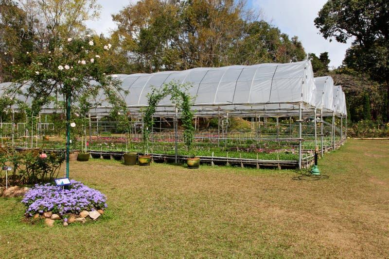 Download Royal Gardens. stock photo. Image of lifestyle, religious - 20992560