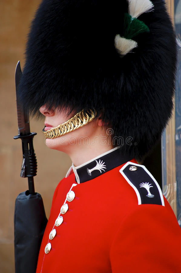 Free Royal Guard Stock Photos - 19416593