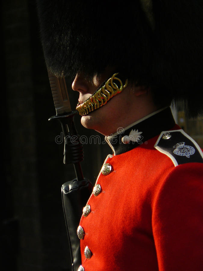 Download Royal Guard In London Editorial Stock Photo - Image: 14932023