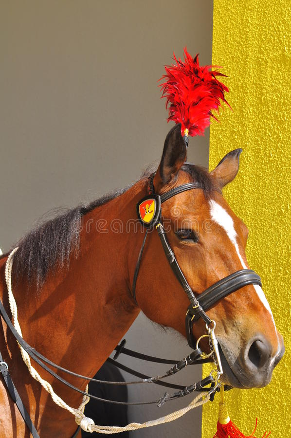 Download Royal Horse Guarding The Palace Editorial Stock Image - Image: 23125679