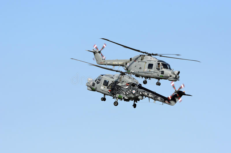 Download Royal Navy Black Cats editorial stock photo. Image of lynx - 21162163