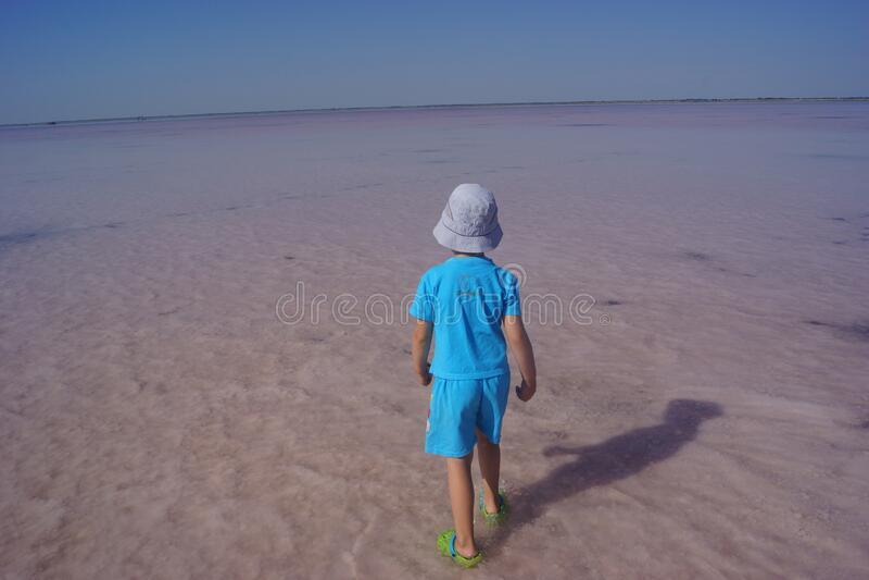 The Royal salt shaker. Burlinsky lake Bursol ,The Royal salt shaker 2018 royalty free stock photo