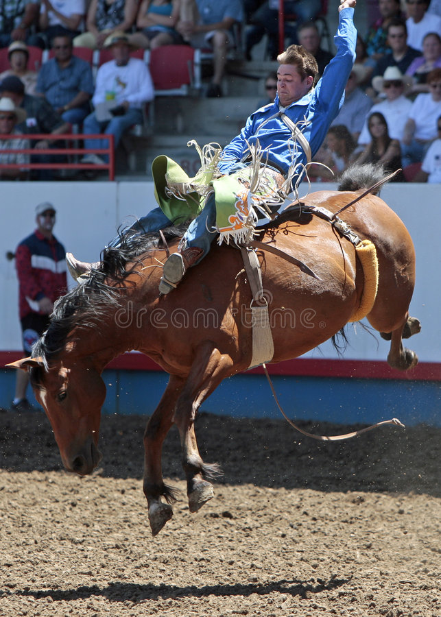 Royce Ford at the Greeley Stampede (Editorial) royalty free stock photos