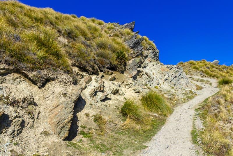 Roys szczyt blisko Wanaka zdjęcia royalty free