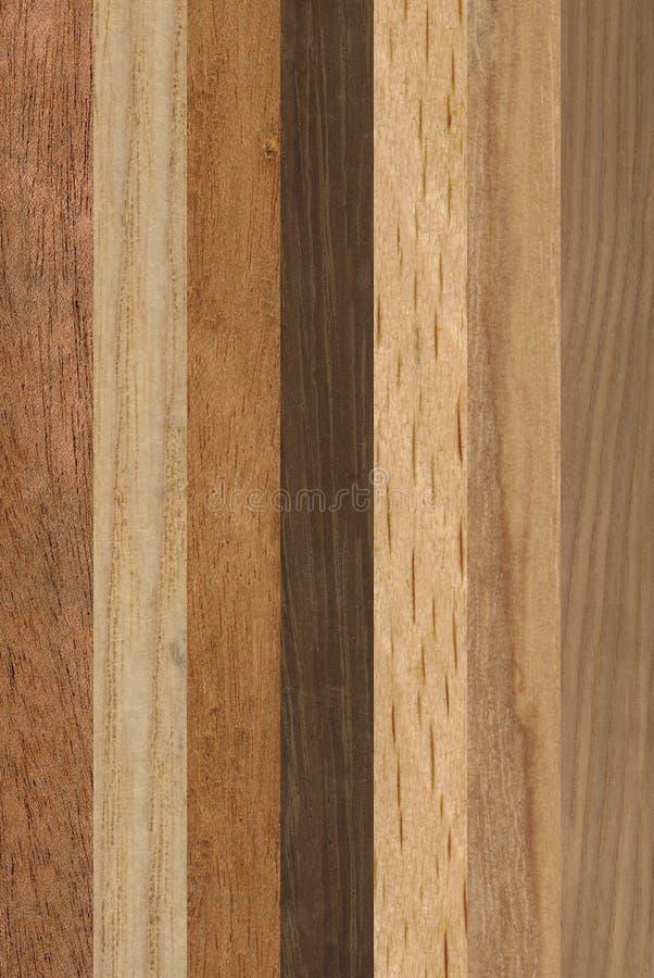 rozbierzcie drewna zdjęcia royalty free