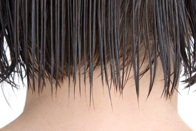 rozczesany włosy zdjęcie royalty free