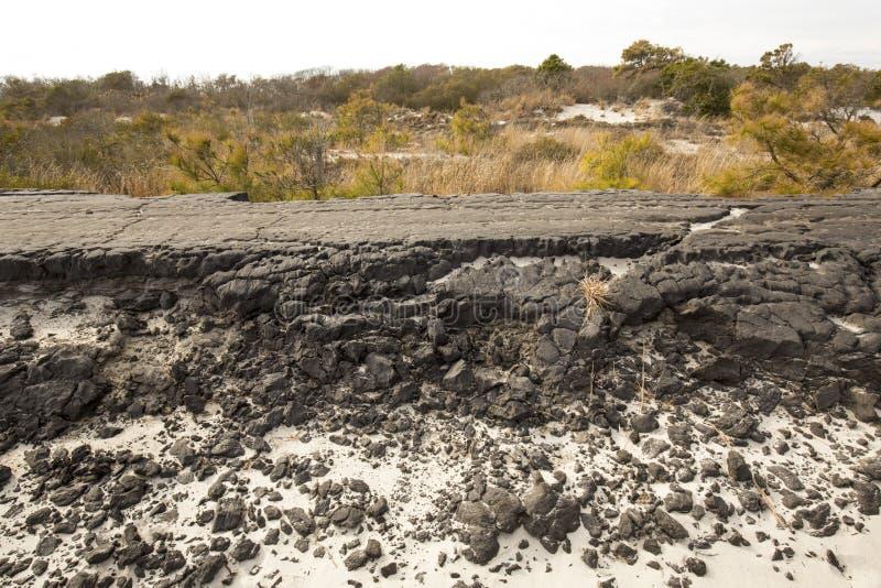 Rozdrobnić ruiny Baltimore bulwar na Assateague wyspie, Mar fotografia stock