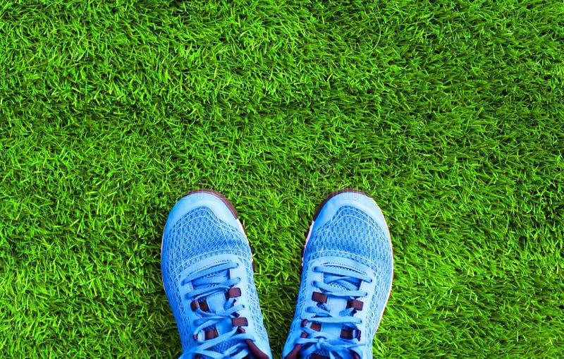 Rozdziela błękitnych sportów sneakers na zielonej trawie textured zdjęcie royalty free
