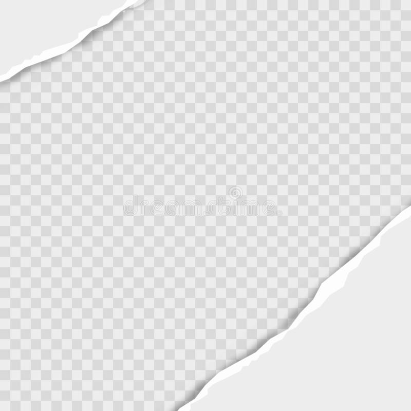 Rozdzieram obciosywał horyzontalnych popielatych papierowych paski dla teksta lub wiadomości wektor ilustracji