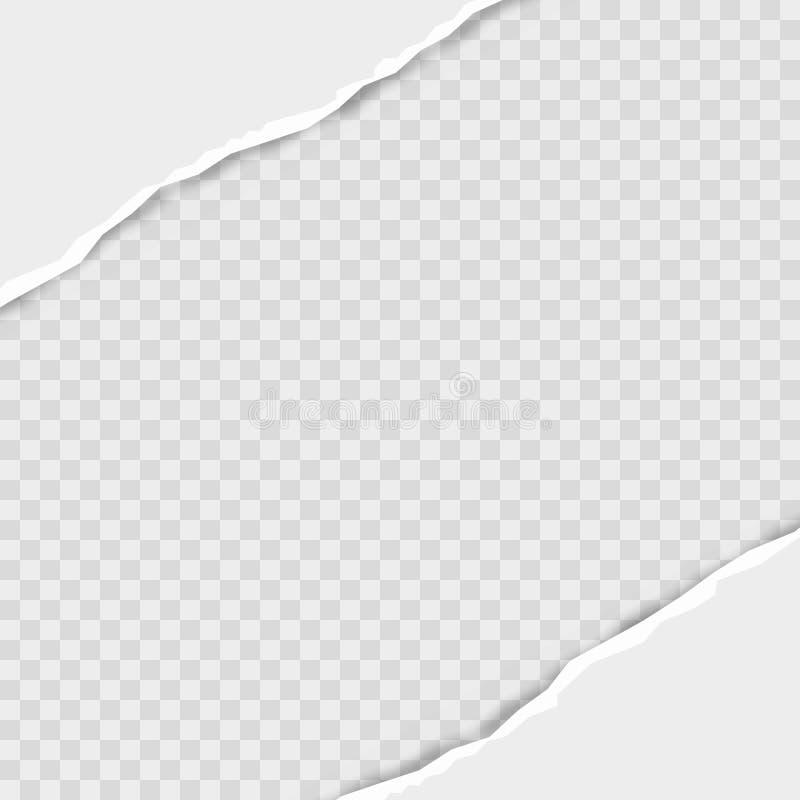 Rozdzieram obciosywał horyzontalnych popielatych papierowych paski dla teksta lub wiadomości wektor ilustracja wektor