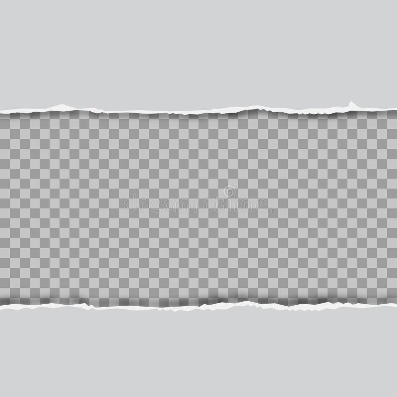 Rozdzieram obciosywa? horyzontalnych popielatych papierowych paski dla teksta lub wiadomo?ci wektor ilustracja wektor
