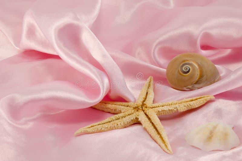Roze achtergrond stock afbeeldingen