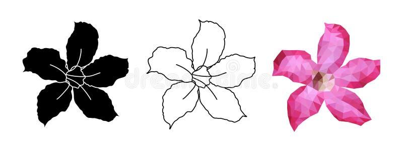 Roze Adenium-bloem Reeks Tropische die Bloemen op Witte Achtergrond wordt geïsoleerd - Vector stock illustratie