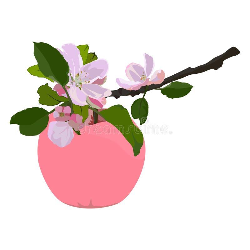 Roze appel en tak in bloesem, vector vlak geïsoleerde illustratie royalty-vrije illustratie