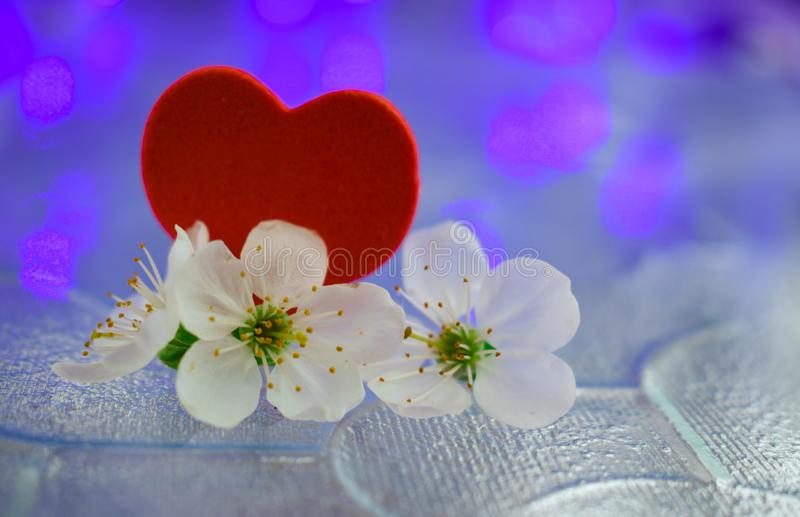 Roze blauwe de dagtederheid van de hartenvalentijnskaart stock afbeeldingen