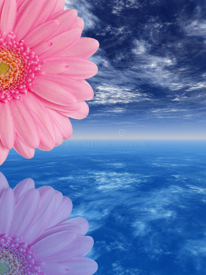 Roze bloem royalty-vrije illustratie